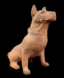 cc20a: Terra cotta figure of a hunting dog. Han Dynasty (200 b.c. to 200 a.d.), China.